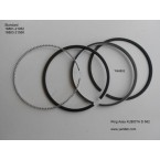 Piston rings assy
